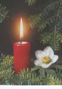 Kerze-Advent